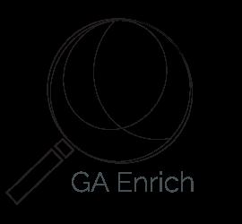 GA-Enrich